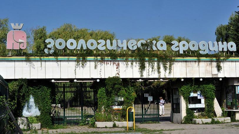 kluchar-zoo-park-sofia-zoologicheska-gradina